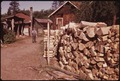 CULL LOGS STACKED FOR SALE AT BIG MOOSE - NARA - 554413.tif