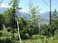 Caccia di üsei - panoramio - schoella.jpg