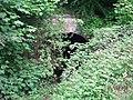 Cadeby Tunnel - geograph.org.uk - 863965.jpg