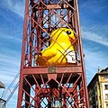 Caged duck - panoramio.jpg