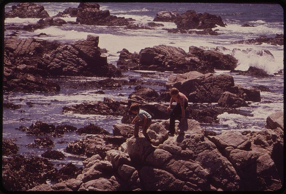 California - Carmel Beach - NARA - 543492
