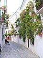 Calle Real, Barrio de la Villa, Priego de Córdoba..jpg