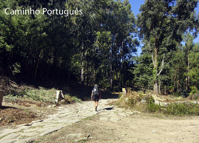 File:Caminho Portugues.jpg