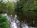 Camowen River, Omagh - geograph.org.uk - 787671.jpg