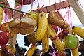 Cancillería celebra el inicio del Inti Raymi (7402446664).jpg