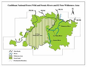 El Yunque National Forest - El Yunque National Forest map