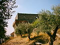 Castelo de Ourém (15).JPG