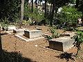 Cemetery of Kibutz Yagur IMG 2931.JPG