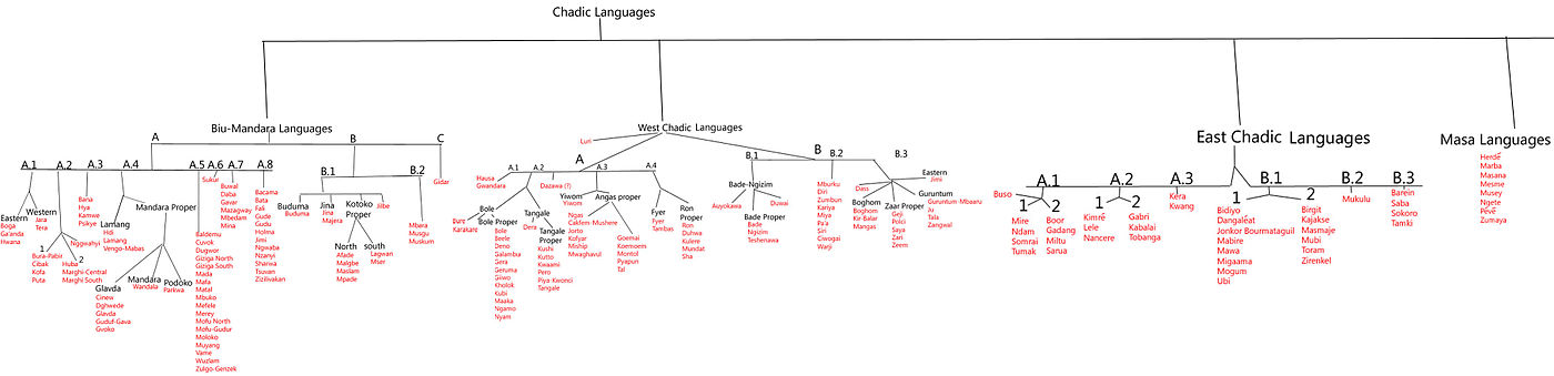 A chart of the Chadic branch of the Afroasiatic languages.