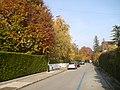 Chemin Charles Georg - panoramio.jpg