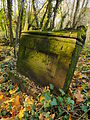 Chenstochov ------- Jewish Cemetery of Czestochowa ------- 207.JPG