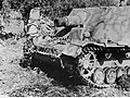 Ciężkie działo szturmowe Brummbar na froncie pod Nettuno - Anzio (2-2176).jpg