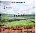 CicloHidrologicoID-wGpCMooxCh.jpg