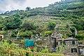 Cinque Terre, Italy - panoramio (17).jpg