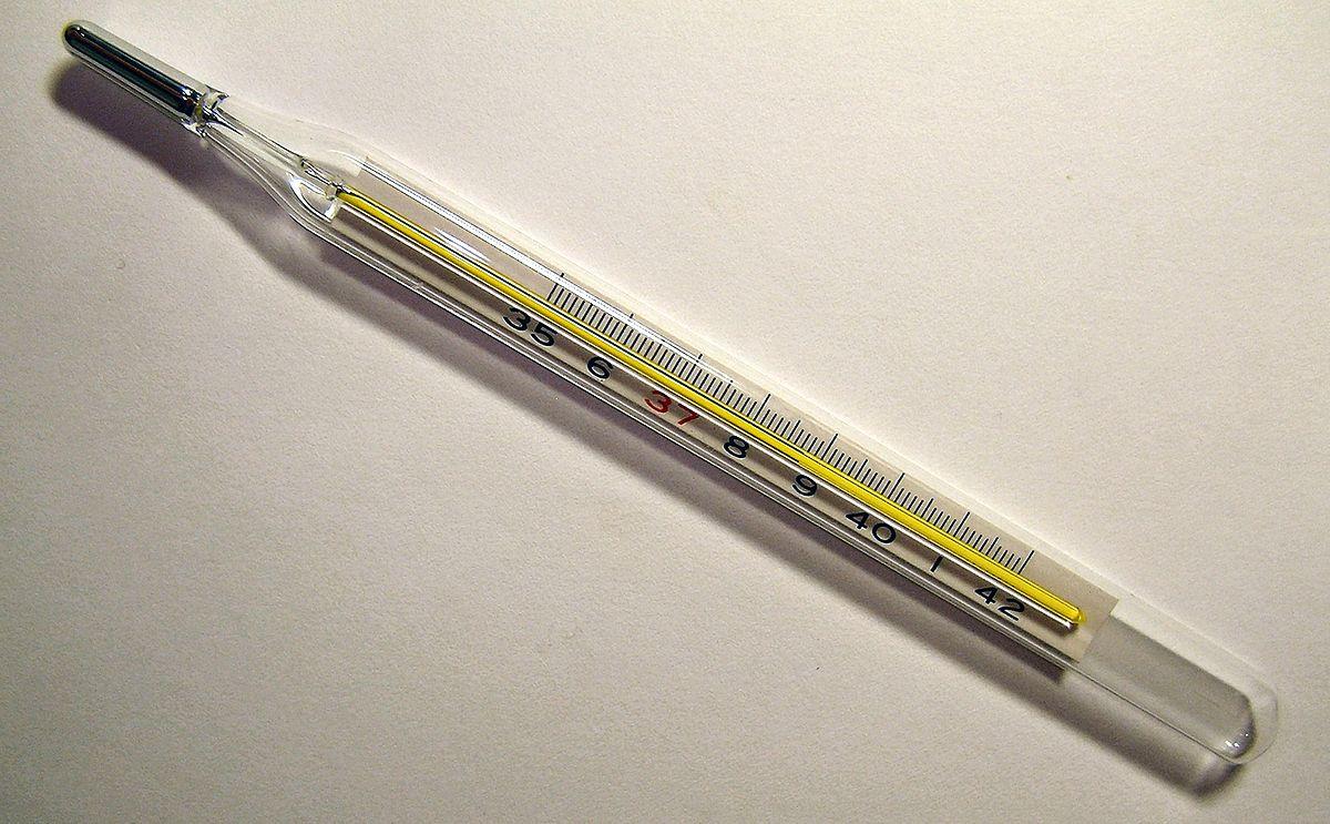 Termometro Usos / Termómetro modelo 5400 estos instrumentos superan a cualquier otro termómetro por infrarrojos (o pirómetro).