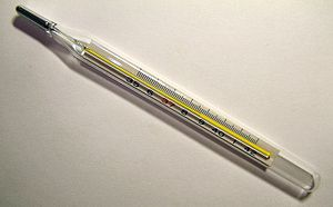 A medical/clinical thermometer showing the tem...