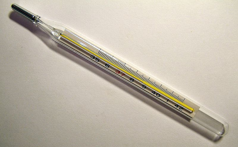 File:Clinical thermometer 38.7.JPG