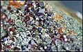ClinochloreEtGrenatItaliePreovenanceAlaRefMGL35323 MuséumHistoireNaturelleLille GLAM2016 PhotoLamiot 21.jpg