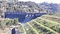 Corbara-Lago di Corbara-05E.jpg