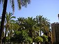 Cordoba, Spain (5459590576).jpg