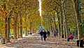 Couloir de l'automne, Jardin des Plantes de Paris, 2014.jpg