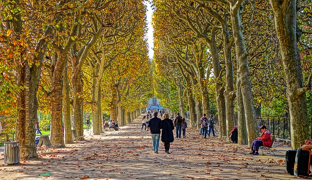 file couloir de l 39 automne jardin des plantes de paris wikimedia commons. Black Bedroom Furniture Sets. Home Design Ideas