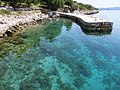 Croatia, Kornati, Sit - panoramio (5).jpg