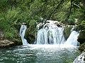 Croatia P8134644 (3937551482).jpg