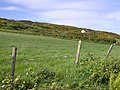 Crockea Townland - geograph.org.uk - 1331109.jpg