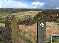 Crompton Moor, Shaw - geograph.org.uk - 174446.jpg