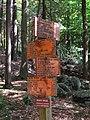 Crossing of Appalachian Trail and Long Path (2013).jpg
