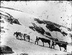 Crossing the Drift on Mount Twynem (3594415184).jpg
