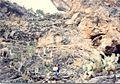 Cueva, Carbonera Coahuila - panoramio (2).jpg