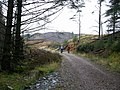 Cycleway, Achray Forest - geograph.org.uk - 72987.jpg