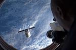 Cygnus Orb-D1.7.jpg