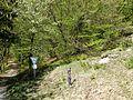 D-BW-BL-Albstadt - Naturschutzgebiet Mehlbaum 1573.JPG