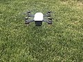 DJI Spark à l'essai (ici à 50 cm du sol).jpg