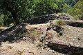 Dacian Fortress of Capalna 044.jpg