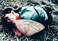 Dead woman from the My Lai massacre.jpg