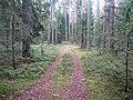 Degučių sen., Lithuania - panoramio (184).jpg