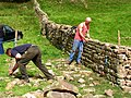 Demonstration of dry-stone walling at Reeth Show - geograph.org.uk - 574631.jpg