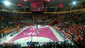 2015 World Men's Handball Championship - Russia vs Denmark at the Lusail Sports Arena