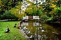 Der Bad Mergentheimer Kurpark im Herbst. 02.jpg