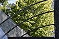 Dettaglio. Natura e architettura.jpg