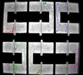 File:Development-of-social-behavior-in-young-zebrafish-Video1.ogv
