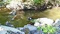 Devin River Valley Iz3.jpg