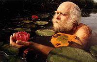 Devries lotus.jpg