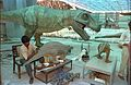 Dinosaurs Alive Exhibition in Progress - Science City - Calcutta 1995-June 400.JPG