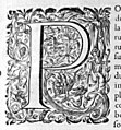 Diplomatica P 17776.jpg