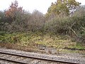 Dismantled railway 4 - geograph.org.uk - 1284813.jpg